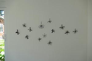 Specimen 2, by Susan Williams