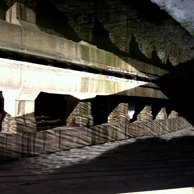 Leeds Art Walk (Brown)
