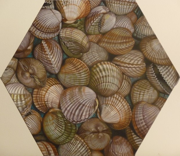 Clams (Painting Patchwork)