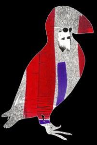 Puffin bird