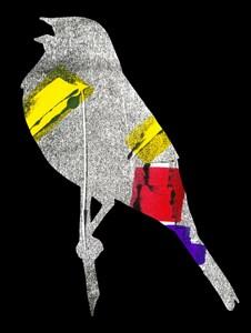 Yellowhammer bird