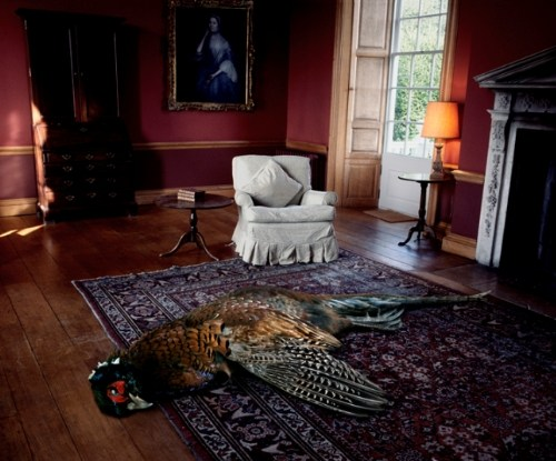 Drawing Room with Pheasant