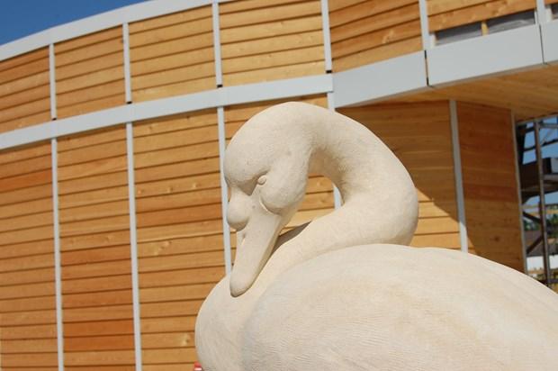 Tesco Swan