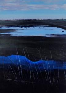 Across the fen, by Sue Blandford