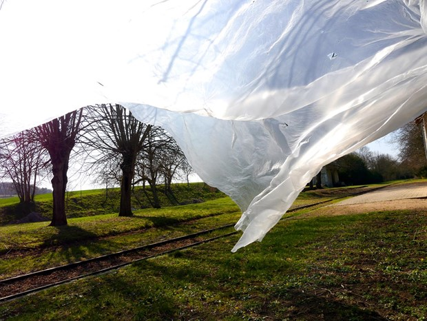 Nature Unwrapped (membraine)