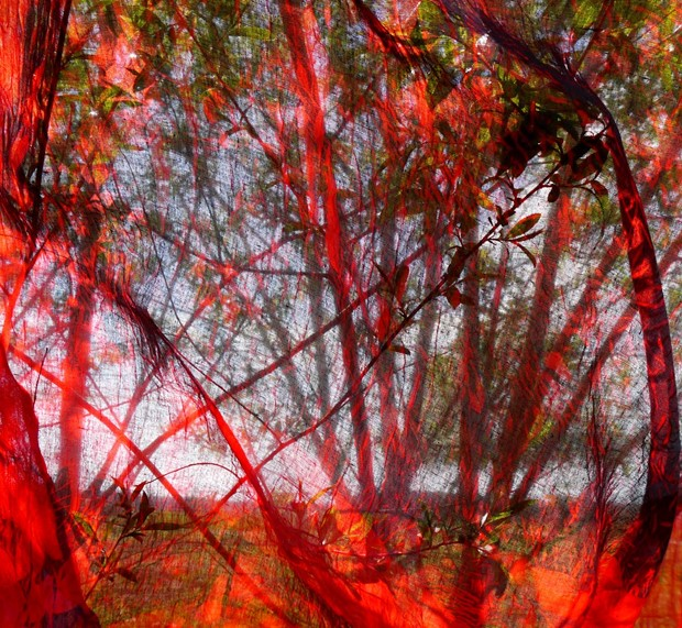 Spring on Fire, series
