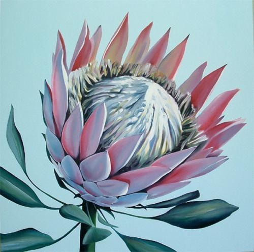South African Sun - Protea