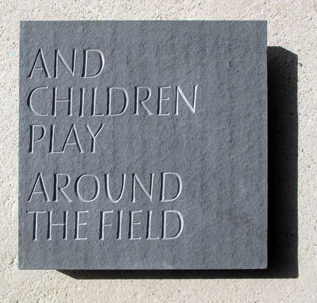 Firs Field Poem