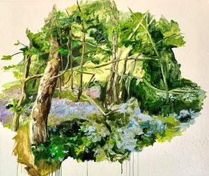 Bluebell woods, by Rosie Greenhalgh