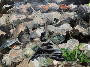 Ploughed, by Rosie Greenhalgh