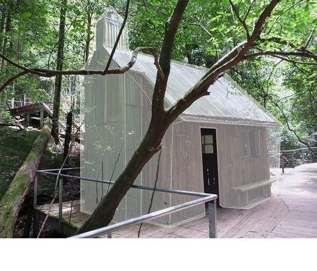 New large rainforest based installation