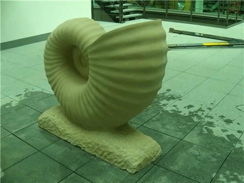 New Look Ammonite