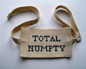 Total Numpty, by Helen Higgins
