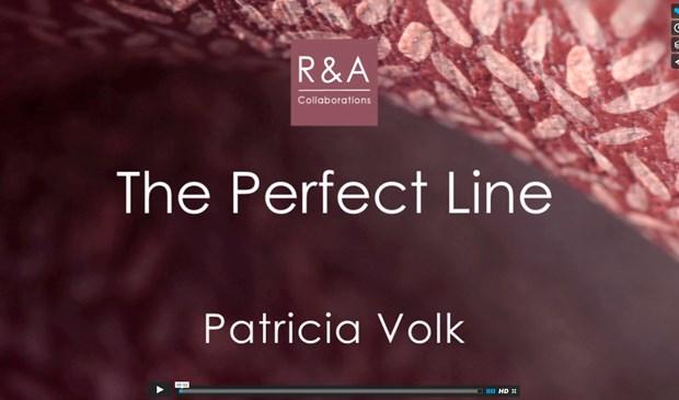 The Perfect Line - Patricia Volk