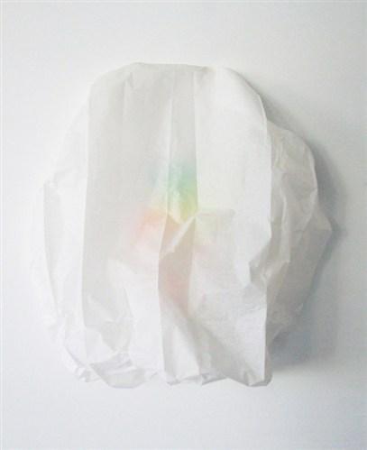 Ray (tissue)