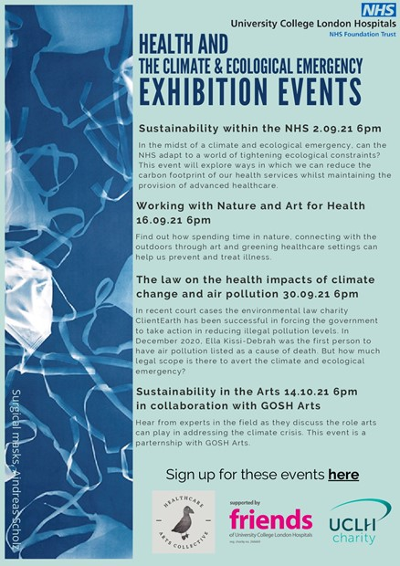 Health and Climate & Ecological Emergency Exhibition, by Claire Mc Dermott