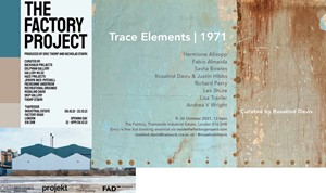 TRACE ELEMENTS 1071 at The Factory Project, by Lisa Traxler
