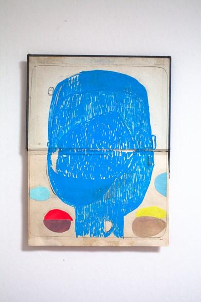Blue Head 1