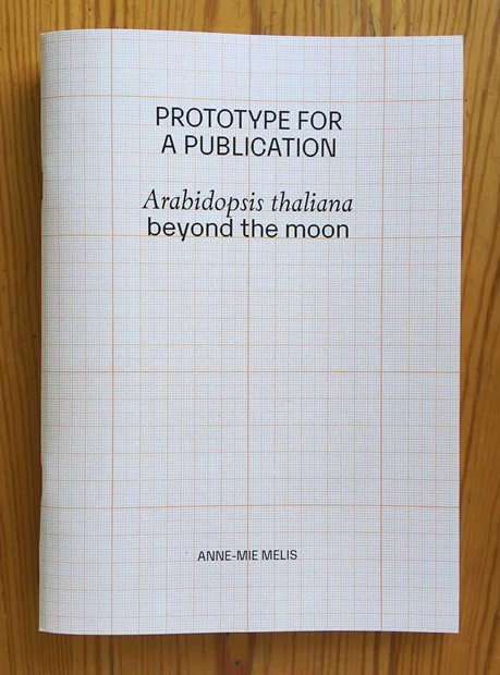 Arabidopsis thaliana beyond the moon