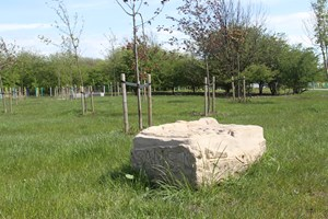 The Cuningar Stones: The Reservoir Stone
