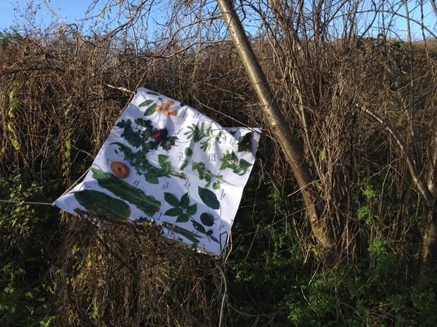 Edible Plant Survival Tarp