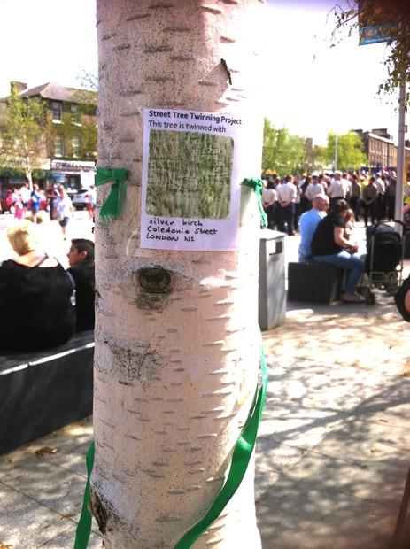 Street Tree Twinning Project