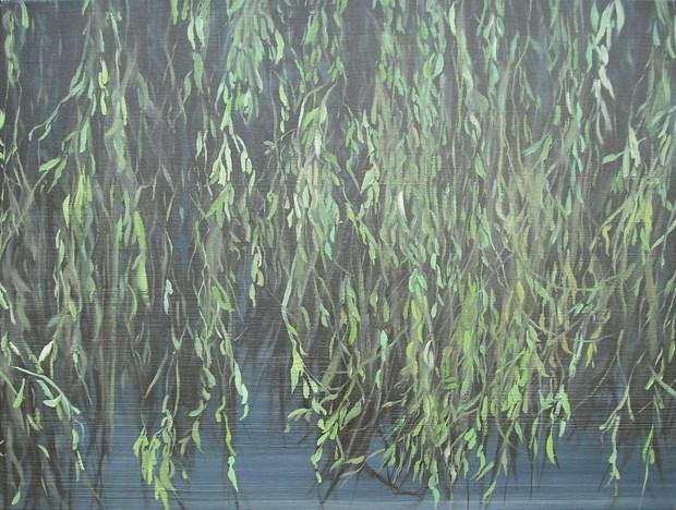 Willow Land 1