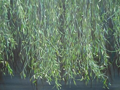 Willow Land 5