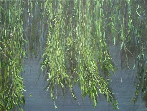 Willow Land 2