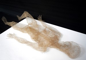 Body Hair: Existention, by Paul Hazelton