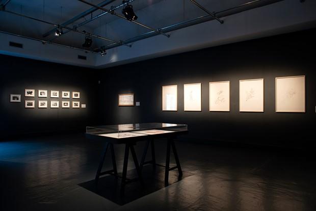 biorhythmic drawing exhibition