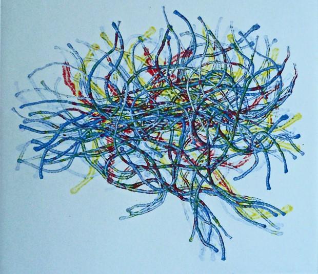 mind fibres