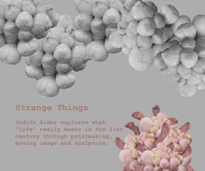 STRANGE THINGS, by Judith Alder