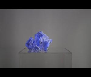 Zero Waste (Metamorphosis), by Judith Alder