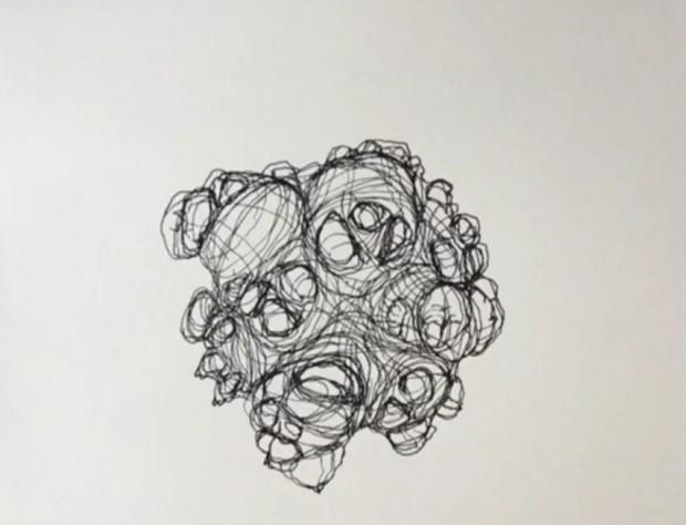Signs of Life: Sculb (aggressive rhizome) - Credit: Judith Alder
