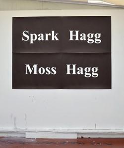 Spark Hagg, by Matthew Herring