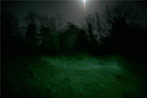 Fairy Fort Nights