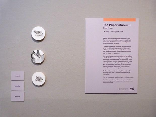 The Paper Museum - Credit: Paul Evans