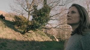 Angel:legnA, by Kye Wilson