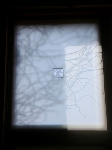 Branches window panel (detail of single pane)