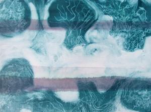 Tree , Lichen, Lichen, Tree, by Karen Howse