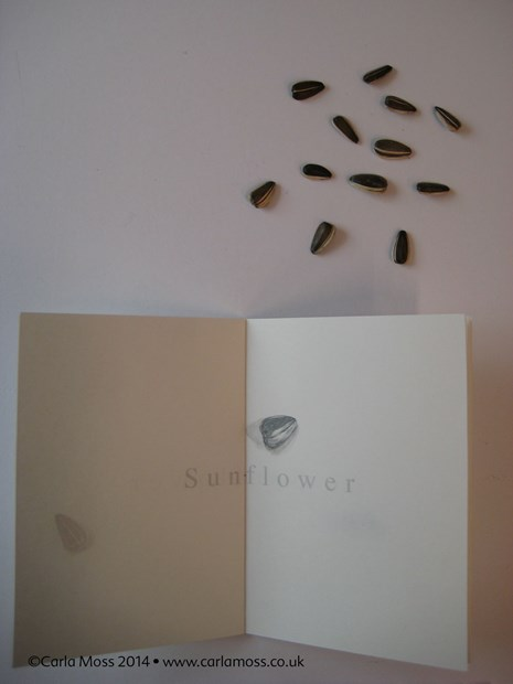 Sunflower seed book