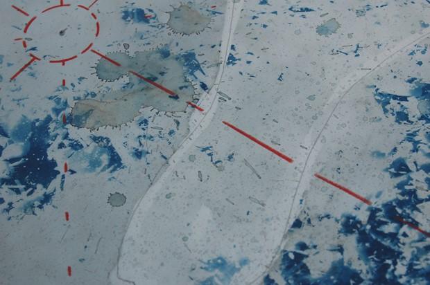 Biosphere : Sun Drawing/Cyanotype
