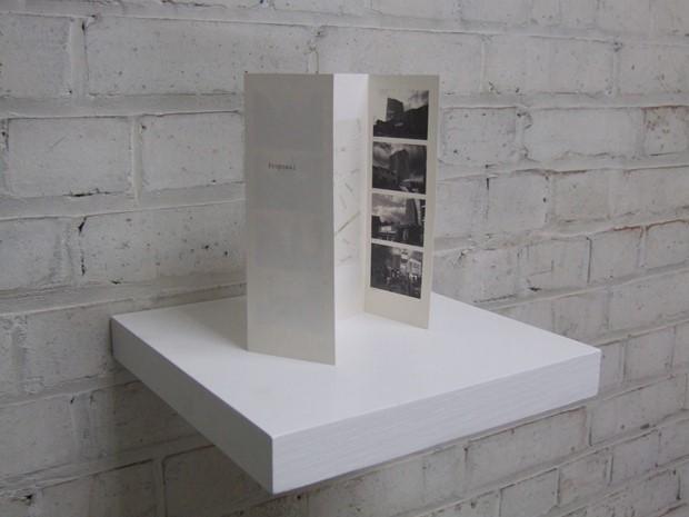 Proposal 2008/1006