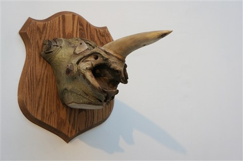Fraxinus Bicornis (Ash Two Horn)