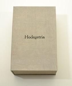 Hodegetria, by Serena Smith