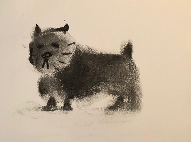 Dog Life Drawing