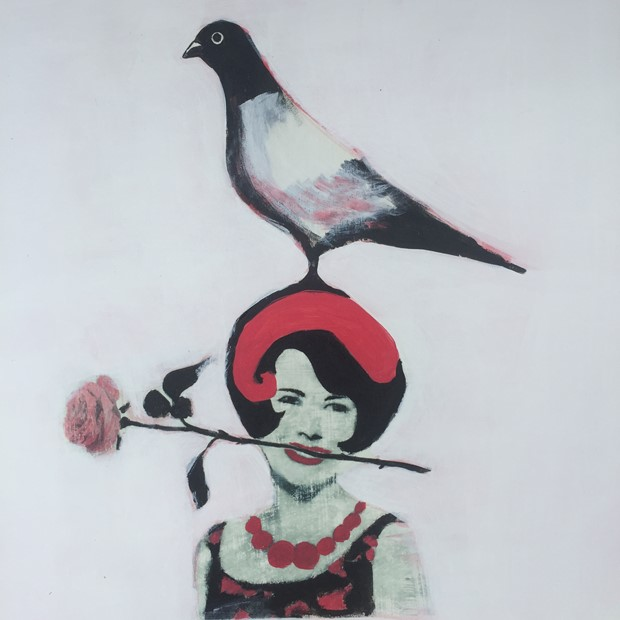 The Fancy Pigeon