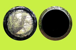 Binocular, by Penny Hallas