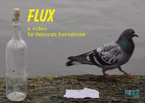 Flux, by Deborah  Burnstone